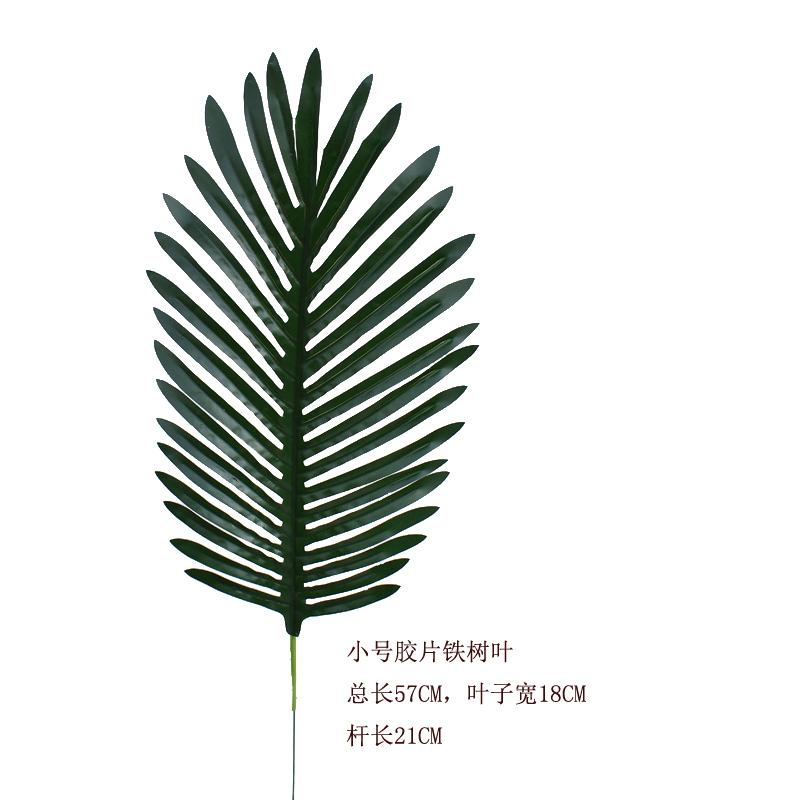 Цвет: 铁树叶5片价钱