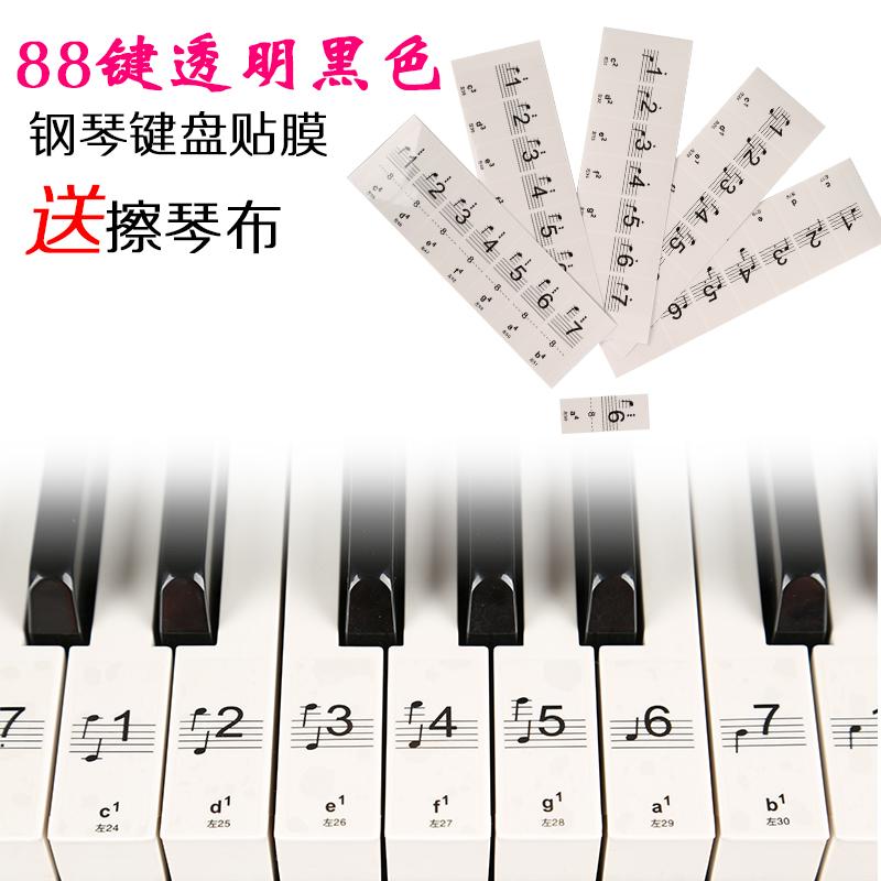炫彩钢琴键盘贴纸 88键 61键 透明电子琴 手卷钢琴键贴五线谱简谱