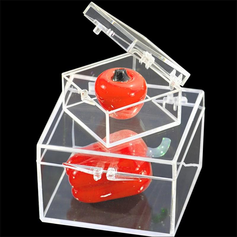 en liten låda med hög genomskinlig plast ruta prov visar att organisera insamling av exemplar av plast slog hårt mot pc
