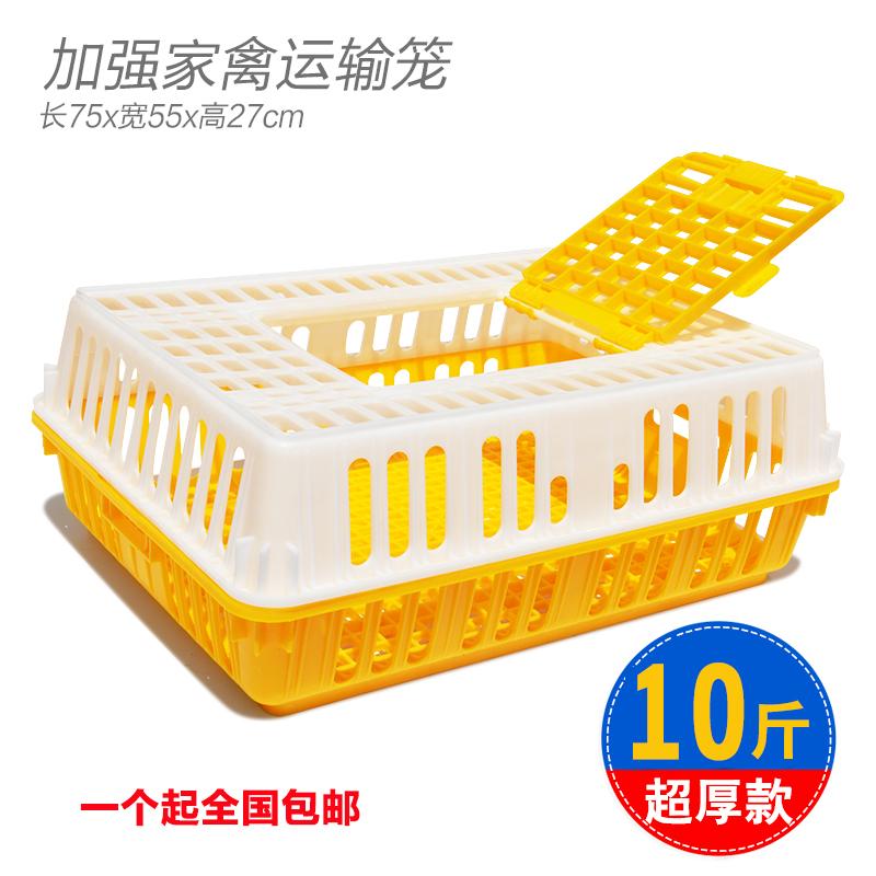 Куп зи транспортные клетки оборот ящик домашнего птицеводства курица яйца животное в клетке поля птенец