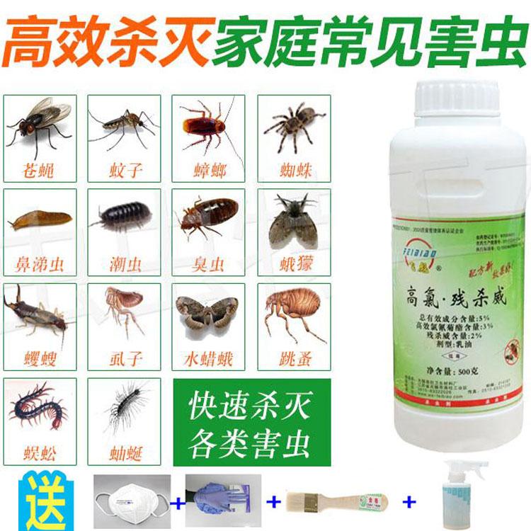 杀虫剂下水道厨房卫生间防除杀蚊蝇蟑螂蛾蠓灭小飞虫跳蚤臭虫蜈蚣