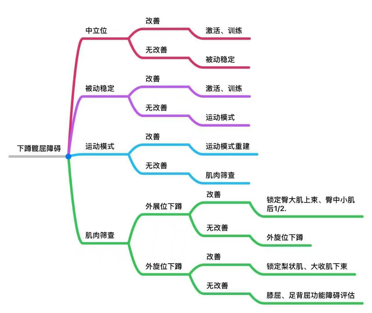 2016.12苗振寛骨膝授業と録音特色ビデオ漢方網伝