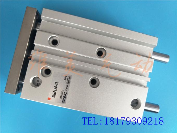 MGPL100-25Z/30Z/40Z/50Z/75Z/100Z ariidae original cu un cilindru dublu trei suliţe