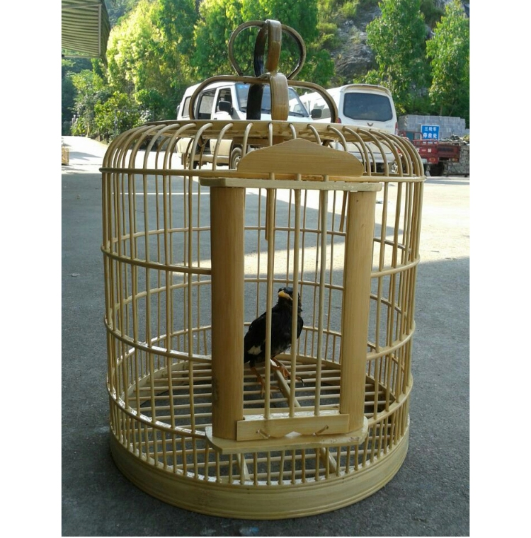 Una jaula grande de Qingyuan tordo viejo Nan Chuan Wren Pigeon kit de accesorios de bambú.