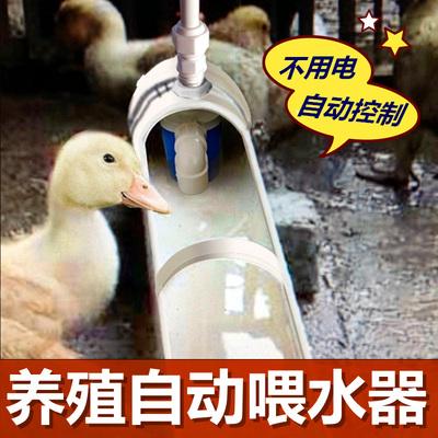 新款鸡鸭鹅自动喂水器饮水器家禽鸭子喝水饮水槽牛羊设备养殖用品