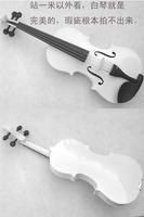 The whole board of the violin hand - made, all - grade violin violin