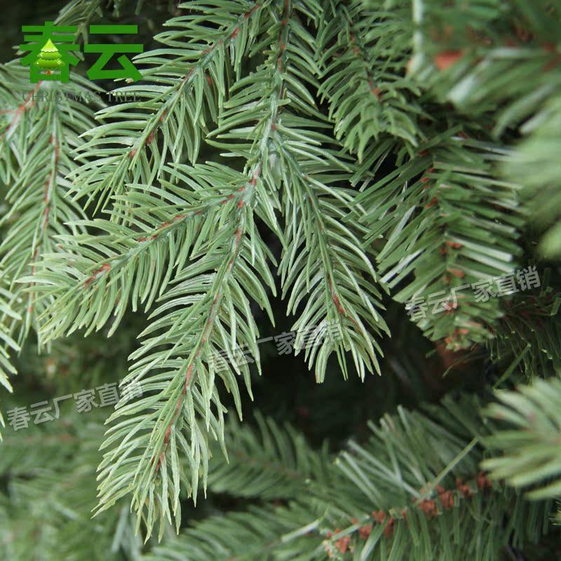 1.8米PE+PVC美版圣诞树 圣诞树装饰品 厂家直销 高档仿真圣诞树_图4
