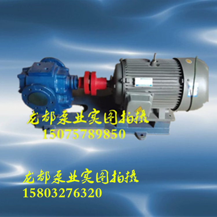 RCB-18/0.36 type insulating asphalt pump / thermal jacketed pump / asphalt injection pump base oil gear pump