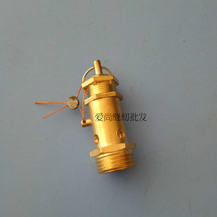 The whole industrial steam iron boiler steam generator safety valve 4
