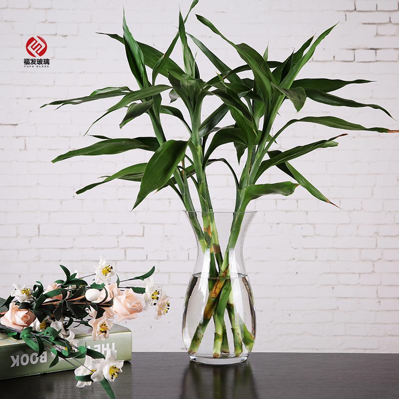 小號富貴竹花瓶現代簡約水培玻璃花瓶純手工制作插百合玫瑰富貴竹透明玻璃花器