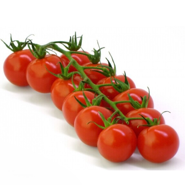 10x Sweet Huge Tomato Tree Seed Nutritious Delicious Fruits