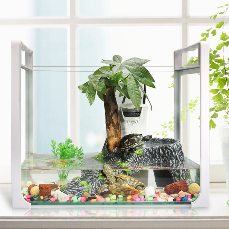 Mini box turtle tortoise aquarium aquarium water box plastic box Guimiao insulation box molding