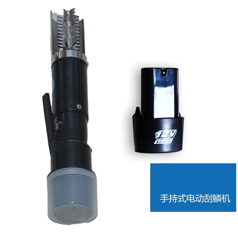 La cocina de escalas cepillado raspador de herramientas eléctricas a escala de un cepillo de diente Lin Lin no con pescado.