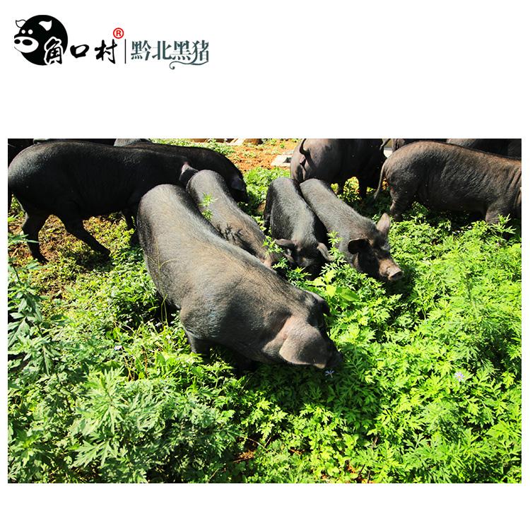 [pig big bone 29 jins] [Guizhou black corner Village North Guizhou black pig scattered ecological fresh pork daily killing