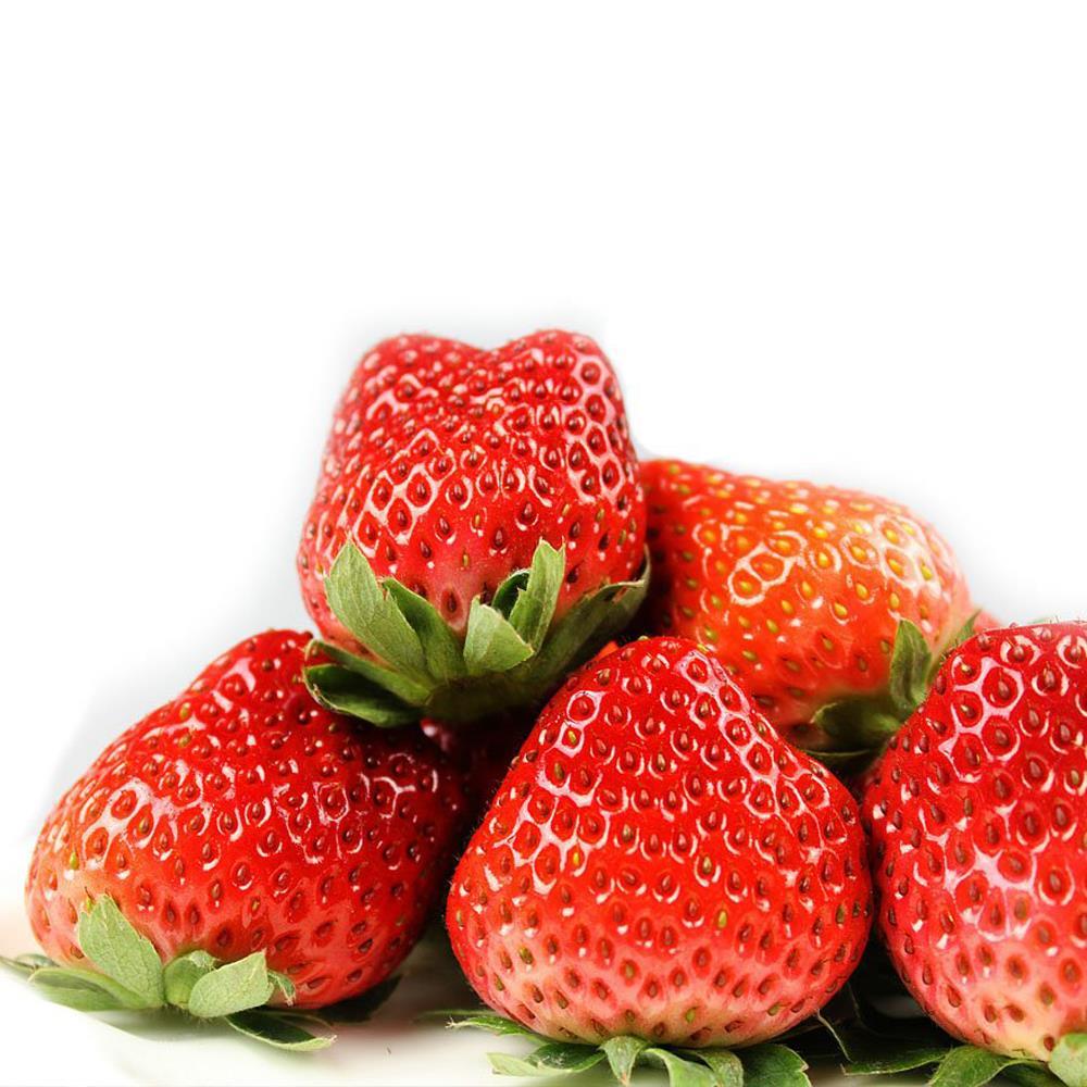 10 pcs/lot 1 Bag Nutritious Delicious Strawberry Seeds Fruit