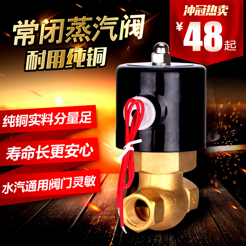 蒸気磁気弁配管耐高温の蒸気が蒸気220電動電磁電磁弁高温制御弁銅製