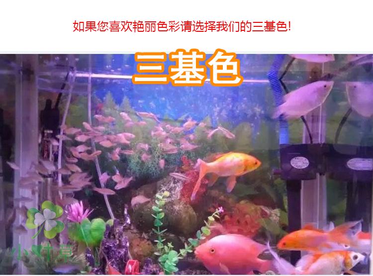αδιάβροχο οδήγησε το ενυδρείο λάμπα ενυδρείο λάμπα χρώμα καταδύσεις Tricolor παπαγάλο δράκο υδρόβια φυτά ειδική λάμπα κόκκινο ψάρι
