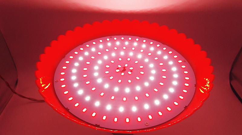led - lambi valgus värske liha küpsetatud sealiha, kui lamp on suur 60w70w turul suure võimsusega lambi energiatõhususe poes tuled.