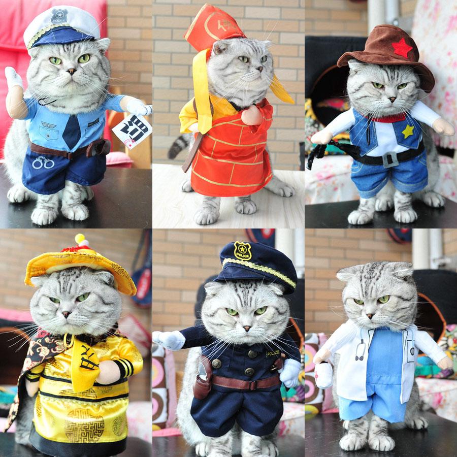 抖音同款宠物服装:宠物猫各种职业装