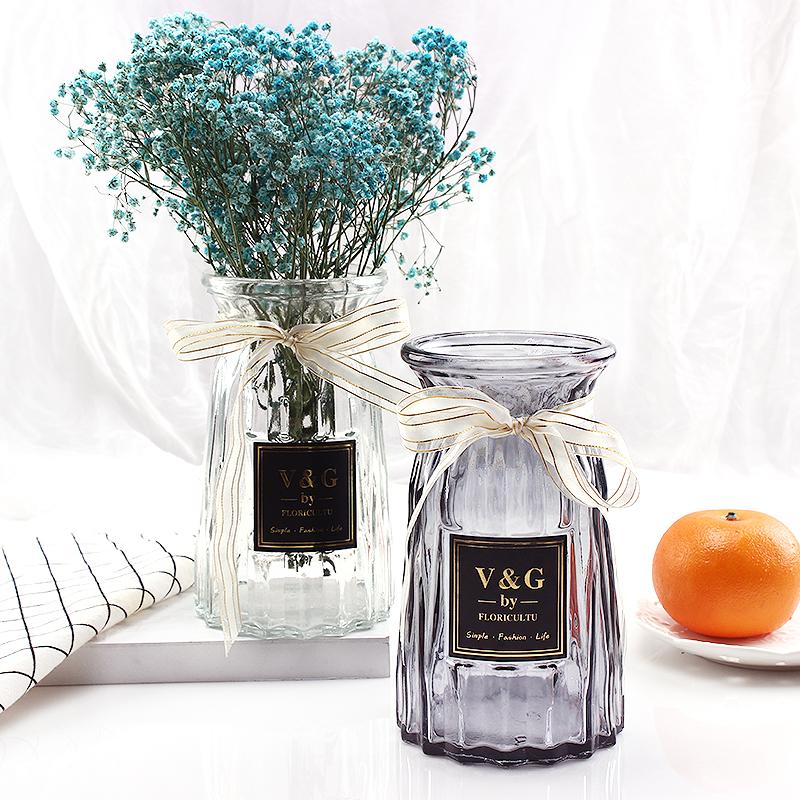 玻璃花瓶摆件家用玻璃瓶客厅透明创意插花瓶家居欧式小清新水培瓶