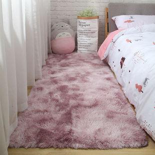 地毯客厅茶几家用加厚地毯卧室可爱网红床边ins风少女心房间地垫