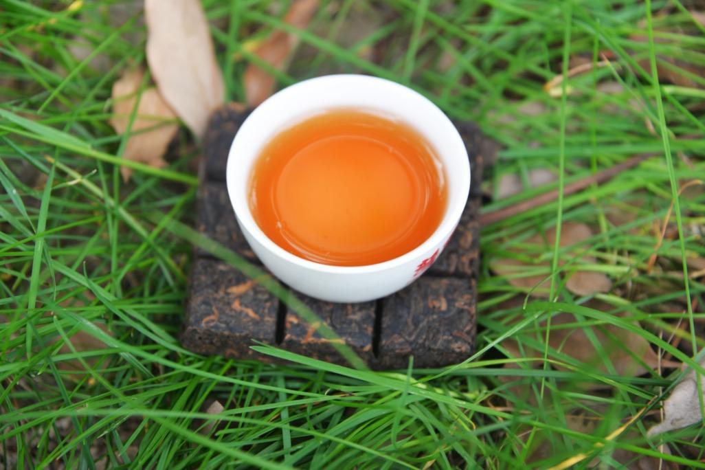 什么样的普洱新茶才有陈化价值?