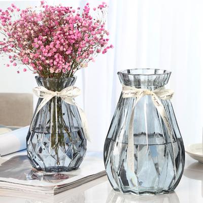 【两只】玻璃花瓶小摆件欧式透明富贵竹水培绿萝客厅干花大插花瓶