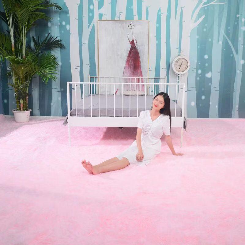 加厚地毯卧室客厅茶几床边飘窗榻榻米房间满满少女心家用脚垫地垫