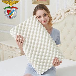 【一对装】希尔顿五星级酒店枕头羽丝绒枕芯