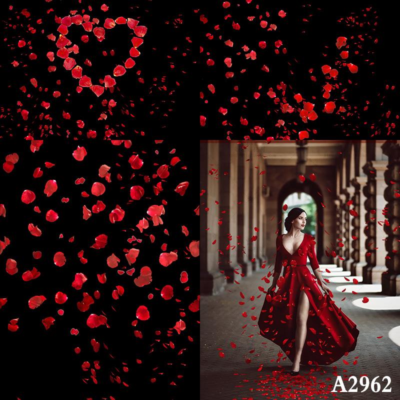 【S350】100张高清玫瑰花瓣叠加合成前景素材