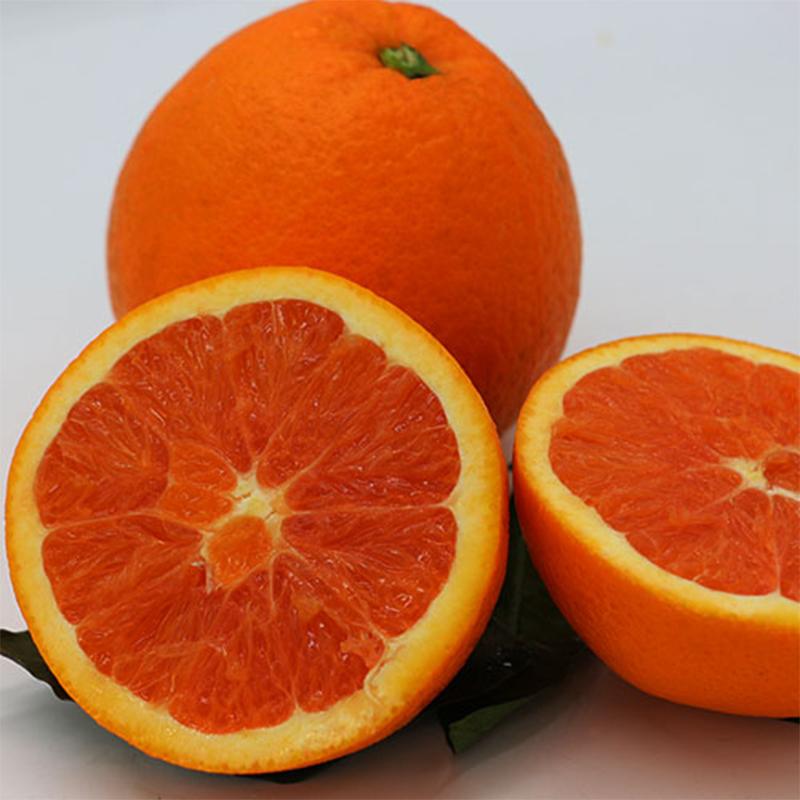 【5斤】中华红橙湖北宜昌秭归血橙